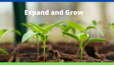 how to expand and grow your business