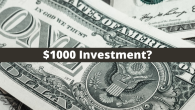 how to make money with a $1000 investment