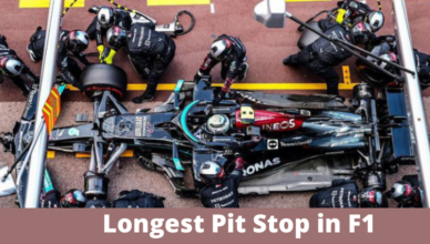 longest pit stop in formula one